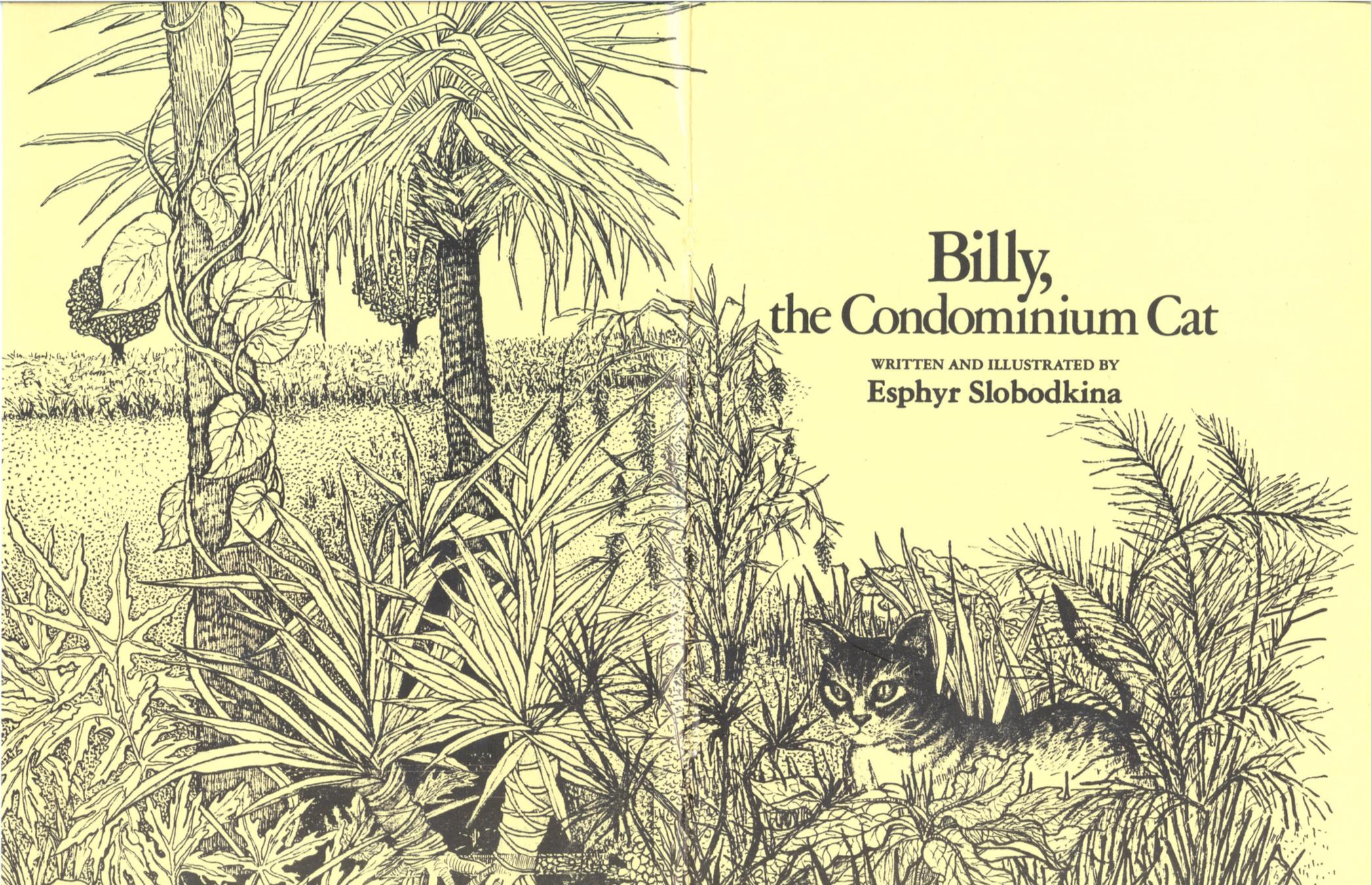 Billy The Condominum Cat